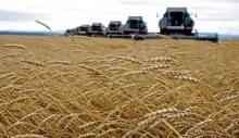 Челябинская область: Специалисты создадут электронный атлас сельхозземель