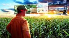 Космический холдинг будет внедрять цифровые технологии в сельское хозяйство